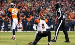 Quarterback AJ McCarron #5 of the Cincinnati Bengals celebrates after throwing a 5-yard first quarter touchdown against the Denver Broncos at Sports Authority Field at Mile High on December 28, 2015 in Denver, Colorado. (Photo by Doug Pensinger/Getty Images)